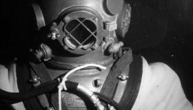 Divers Day-Long Beach Aquarium