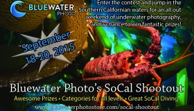 2015 SoCal Shootout-Photo Contest