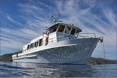 Channel Islands Dive Adventures trips aboard the Magician dive boat