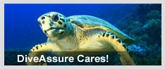 diveassure accident insurance