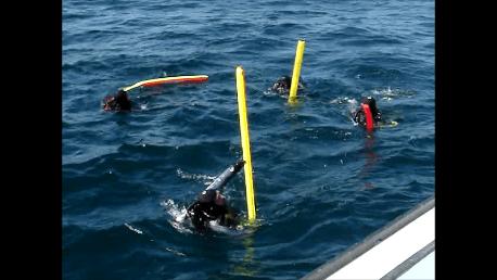 drift-diving