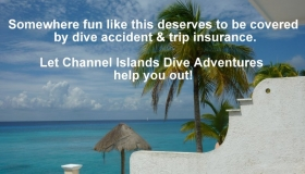 Join DAN or DiveAssure today!
