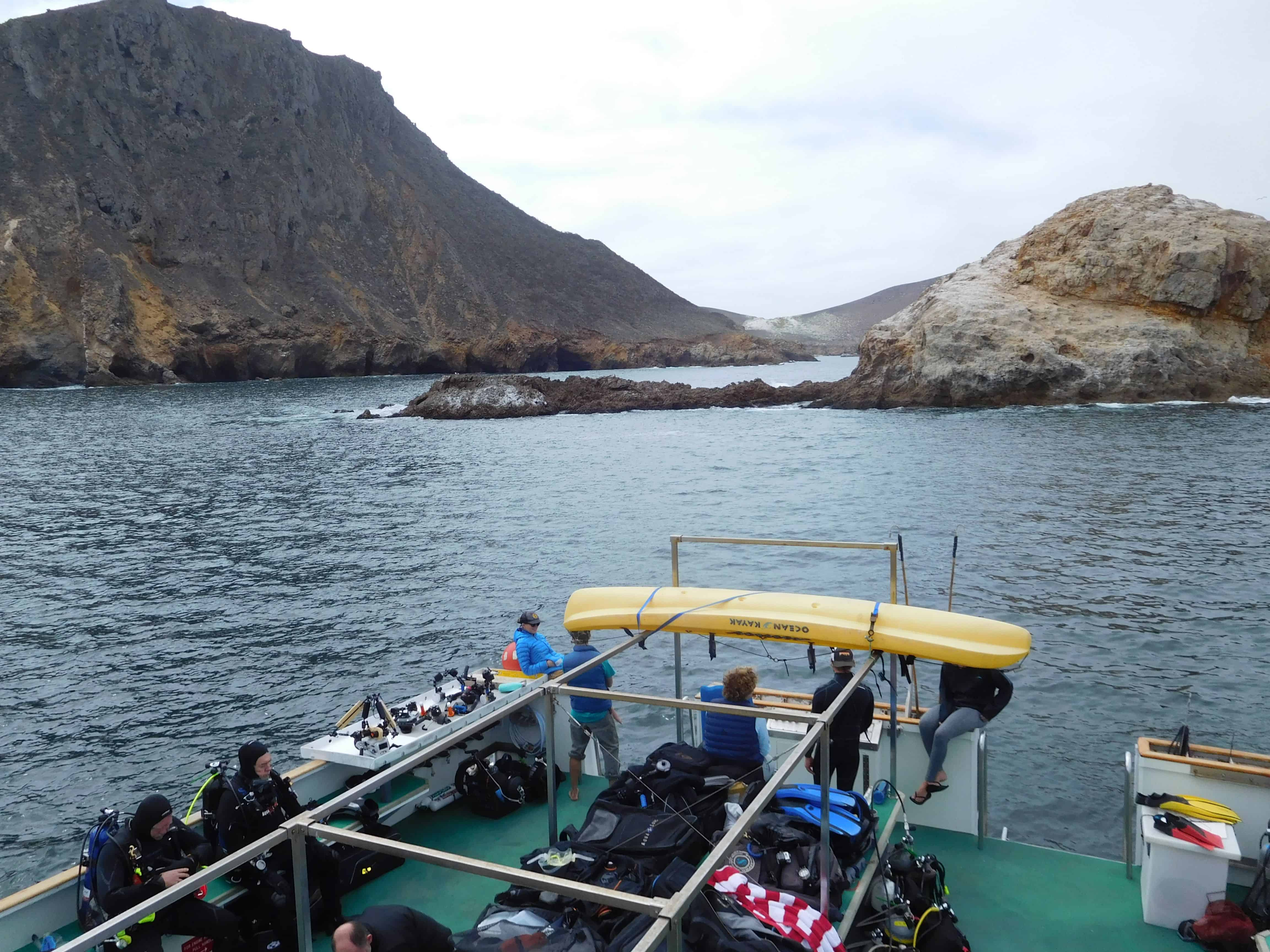 Truth at San Miguel on channel islands dive adventures scuba trips