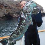 Channel Islands Dive Adventures scuba trips aboard the Peace dive boat