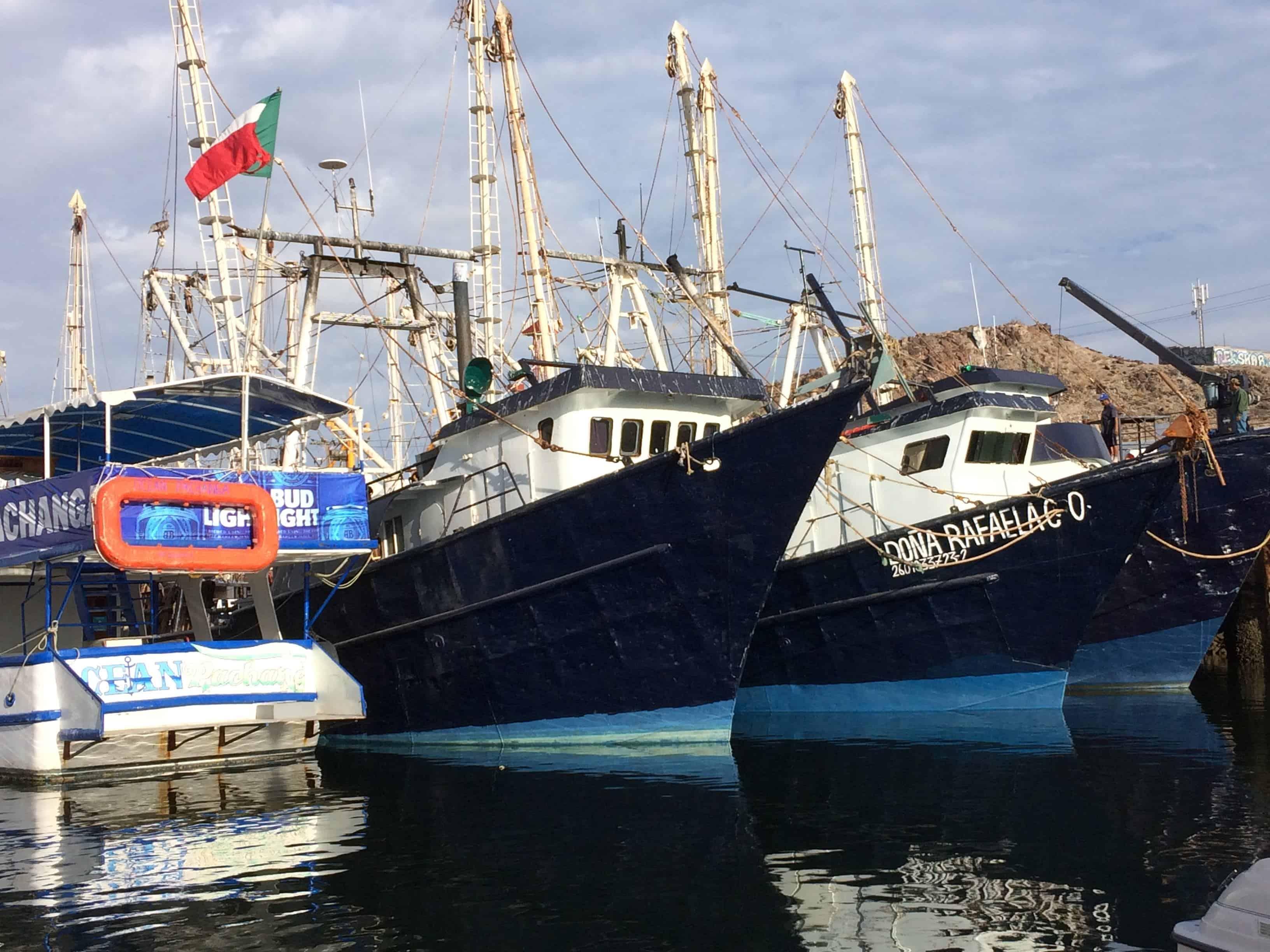 puerto penasco where rocio del mar is