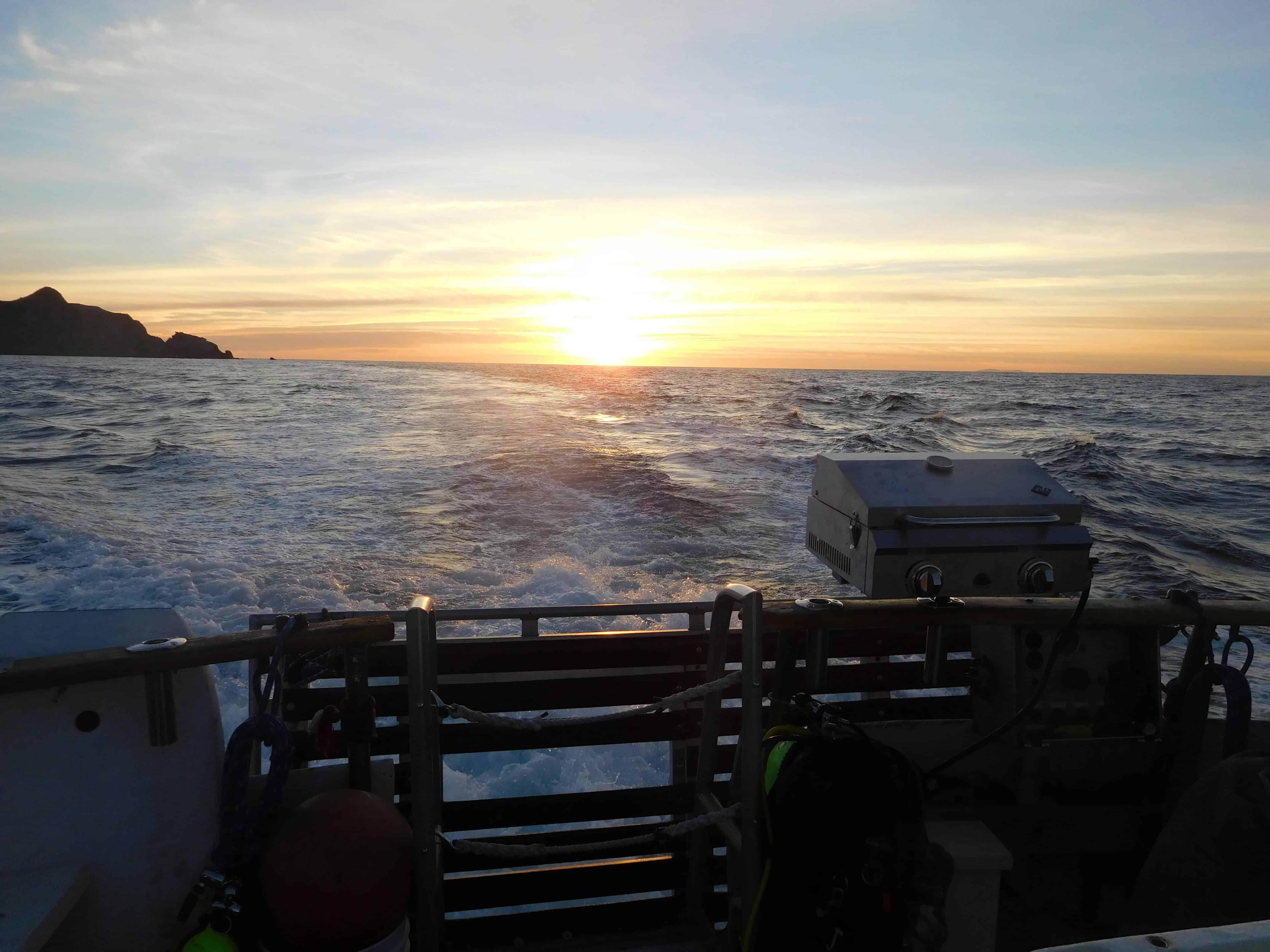 magician dive boat trip to catalina island
