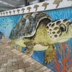 the loggerhead center in jupiter