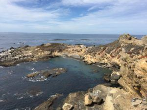 monterey-point-lobos