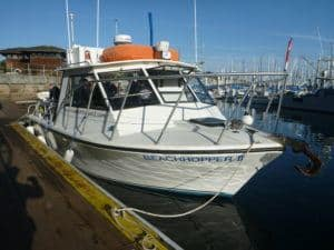 monterey beachhopper dive boat